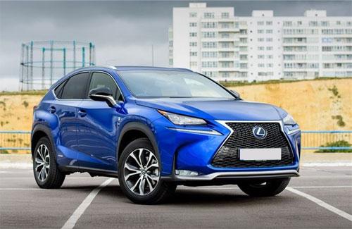 Hiện xe nhập khẩu từ Nhật vào Việt Nam chủ yếu là Lexus, Subaru cùng một số mẫu lẻ của Toyota.