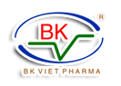 BK Việt